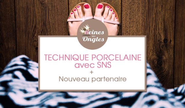 technique porcelaine sns