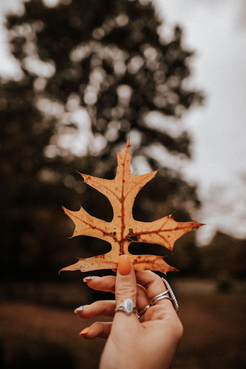 OPI automne 21